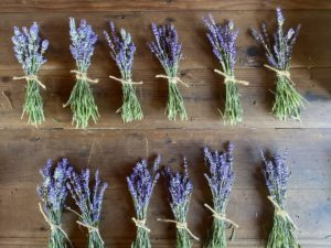 Three things to do with lavender