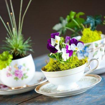 blog-flowers-3