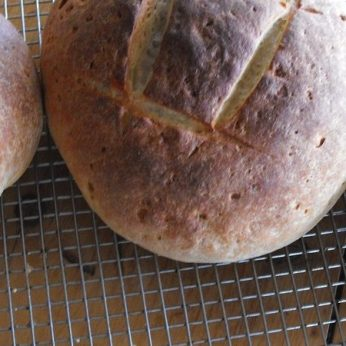blog-sourdough-2-1
