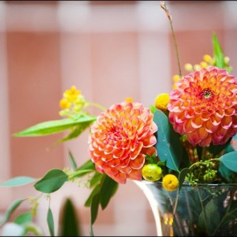 blog-summer-flowers-1